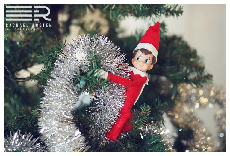 Denver Parker and Stapleton family photographer with a holiday photo of the elf on a shelf in a chirstmas tree.